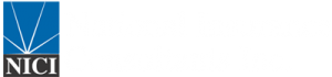 NICI - National Insurance Consultants, Inc.
